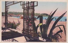 Cp , 83 , TOULON , Les Sablettes - Toulon