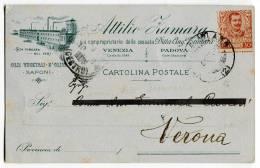 CARTOLINA COMMERCIALE OLI VEGETALI ATTILIO ZAMARA PADOVA VENEZIA ANNO 1903 - Padova (Padua)