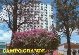 CAMPO GRANDE  * - Campo Grande