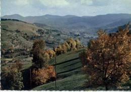 68020 - La Vallée De MUNSTER - Munster