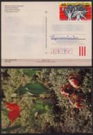 Montreal 1976 Summer Olympics - HUNGARY - Postcard / EASTER EGG - Weight-lifting/wrestling - Used (Sajószentpéter) - Estate 1976: Montreal
