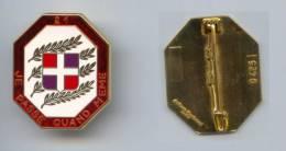 Insigne Du 21e Régiment D´Infanterie ( Translucide ) - Armée De Terre