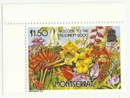 MONTSERRAT MNH 2000 WELCOME TO THE MILLENNIUM FLOWERS FLOWERS PLANT - Montserrat