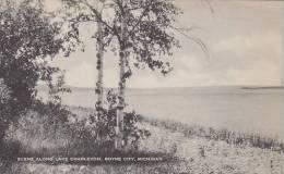 Michigan Boyne City Scene Alonge Lake Charlevoix Artvue