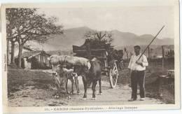 Cpa Bon Etat ,  Cambo , Attelage Basque ,  Ils Sont Beaux Tous Les 3 , Timbre Oblitérations , Courrier Voir Verso - Midi-Pyrénées