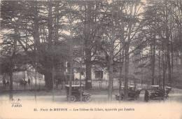 92 FORET DE MEUDON LES CEDRES DU LIBAN APPORTES PAR JUSSIEU VOITURES ANCIENNES - Meudon