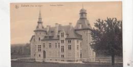BR55261 Dalhem Chateau   2 Scans - Dalhem