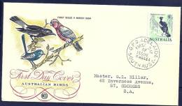 Australia 1964 Birds Aves Oiseaux Vegels Australasian Magpie - Gymnorhina Tibicen FDC - Songbirds & Tree Dwellers
