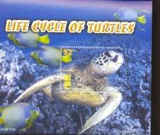 PALAU    747  MINT NEVER HINGED SOUVENIR SHEET OF FISH-MARINE LIFE   TURTLES - Fishes