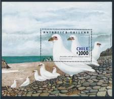 CHILE 2001 ANTARTICA CHILENA Antarctic Pidgeon/Paloma Minisheet** - Antarctic Wildlife