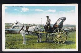 RB 922 - Early Postcard - Caleche - Quebec Canada - Horse & Carriage - Quebec