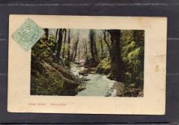 36217      Regno  Unito,   Fairy  Glen  -  Chudleigh,  VG  1910 - Inghilterra