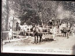 JONQUIERES USINES J.BLANC LE PAYSAN ARRIVEE DES TOMATES A L'USINE - France