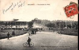 Baccarat - Promenade Du Pâtis - Animée - Baccarat