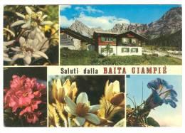 G2489 Pozzo Di Fassa (Trento) - Saluti Dalla Baita Ciampiè - Val San Nicolò - Gruppo Dei Monzoni / Non Viaggiata - Other Cities