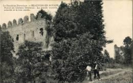 38 Beauvoir En Royans, Ruines Du Chateau Delphinal, CPA Très Bon état - Non Classés