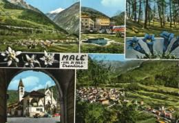 3354 -  Malè (Trento) - Trento