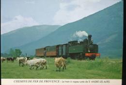 Chemins De Fer De Provence --- Le Train A Vapeur Pres De St Andre Des Alpes - Treinen