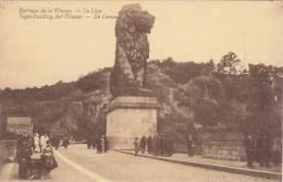 Barrage De La Gileppe - Le Lion (animée) - Gileppe (Barrage)