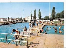 Switzerland Postcard - Carouge - Piscine Municipale    LC1047 - GE Ginevra