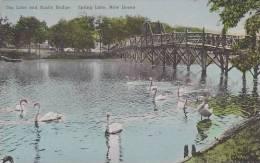New Jersey Spring Lake The Lake And Rustic Bridge Albertype