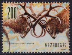 2001 - Hungary - Red Deer (Cervus Elaphus) - DEER - USED - Timbres