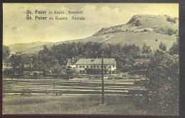 ST.PETER In Krain ( San Pietro Al Carso) Stazione Treni -bahnhof  Zug( Slovenia)cartolina  Viaggiata 1924 - Slovenia