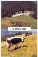 88 - Vosges - BUSSANG - Le DRUMONT -  ( Au Dos Tampon De La Ferme Auberge )  -  Format  10 X 15 - Bussang