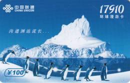 CHINA - Pinguins, China Unicom(IP) Prepaid Card, Exp.date 31/07/08, Used - Pinguins