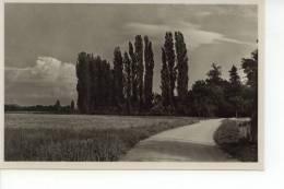 Grandchamp Areuse - NE Neuchatel