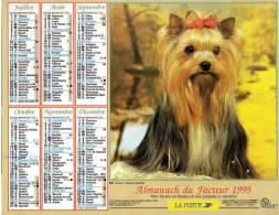 Calendrier PTT 1995.Chien Yorkshire.Au Dos Chaton Blanc Et Tigré - Calendarios