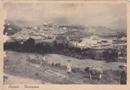 Ceccano-frosinone-panorama-viaggiata 1953 - Frosinone