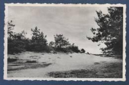ANVERS - CP RETIE - A.C.W. VACANTIEHUIS DE LINDE - DE KLEINE DUIN - NELS - Retie