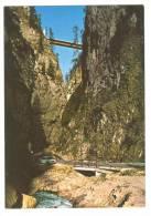 E2051 Rocca Pietore (Belluno) - Serrai Di Sottoguda Alla Marmolada - Auto Cars Voitures / Non Viaggiata - Italia