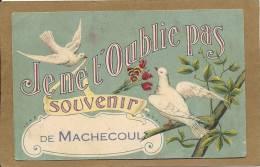 44  MACHECOUL   JE  NE  T OUBLIE  PAS  SOUVENIR  DE  MACHECOUL  (  Colombes ) - Machecoul