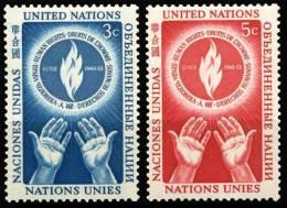 21 à 22  NATIONS UNIES NEW YORK  1953   JOURNEE DES DROITS DE L'HOMME - New York -  VN Hauptquartier