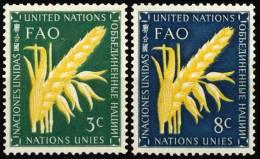 23 à 24  NATIONS UNIES NEW YORK   1954  ORGANISATION POUR L'ALIMENTATION ET5 L'AGRICULTURE - New York - Sede De La Organización De Las NU