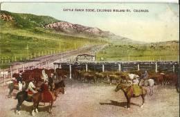 Cattle Ranch Scene, Colorado Midland Ry, COLORADO (angle Droit Haut Plié) - United States