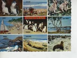 PHILLIPS ISLAND   OHL - Australië