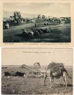 2 CPA - Chameaux - Un Gourbi Arabe -  Casablanca - La Place De France   (52839) - Maroc
