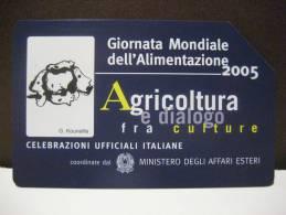 539 GOLDEN EURO - GIORNATA MONDIALE DELL´ALIMENTAZIONE 2005 - USATA PERFETTA QUALITA´ FIOR DI STAMPA - G - Public Advertising