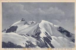Valle Di Lanzo-torino-punta Chalonson-ciamarella Viste Dall'albaron-viaggiata 1942 - Alessandria