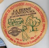 - Etiquette Fromage Camembert La Ferme D´Antignac - 250 G  - Fabriqué En Normandie - - Cheese