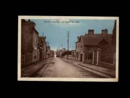 50 - DUCEY - La Route D'Avranches - Ducey