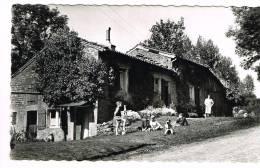 "Postkaart / Carte Postale ""Torgny - Rue De L'Ermitage - Carte Vues"" - Rouvroy"