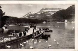 74 - ANNECY - LeS BORDS DU LAC - Annecy