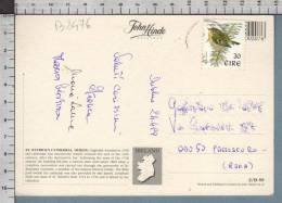 B8476 EIRE Postal History 1999 ANIMAL BIRD - Irlanda
