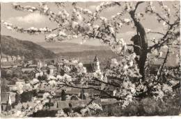 ALLEMAGNE WALDSHUT IN BLUTENSCHMUCK 1957 - Waldshut-Tiengen