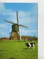 BLESKENSGRAAF  HOLLANDSE MOLEN  HOLANDA  OHL - Niederlande