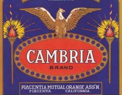 Cambria Brand Oranges Placentia Mutual Orange Association California Vintage Fruit Label - Fruits Et Légumes